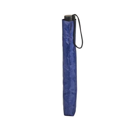 Compact 2 Fold Umbrella (Colour Blue)